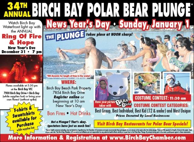 polar-bear-2017