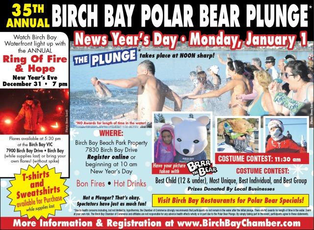 Polar Bear 2018 flyer